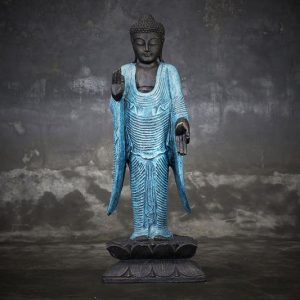 standing buddha teaching