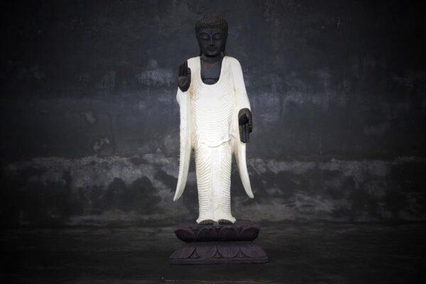 standing buddha teaching