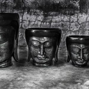 buddha head pot