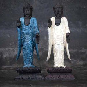 Standing Buddha Blessing Pose