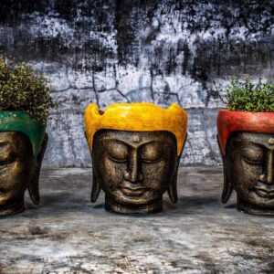 Buddha head flower pot