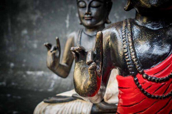 Buddha on lotus hand gesture details shoulder