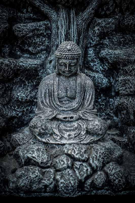 Buddha under tree details Buddha