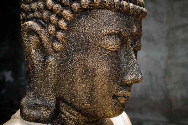 Giant Buddha face details