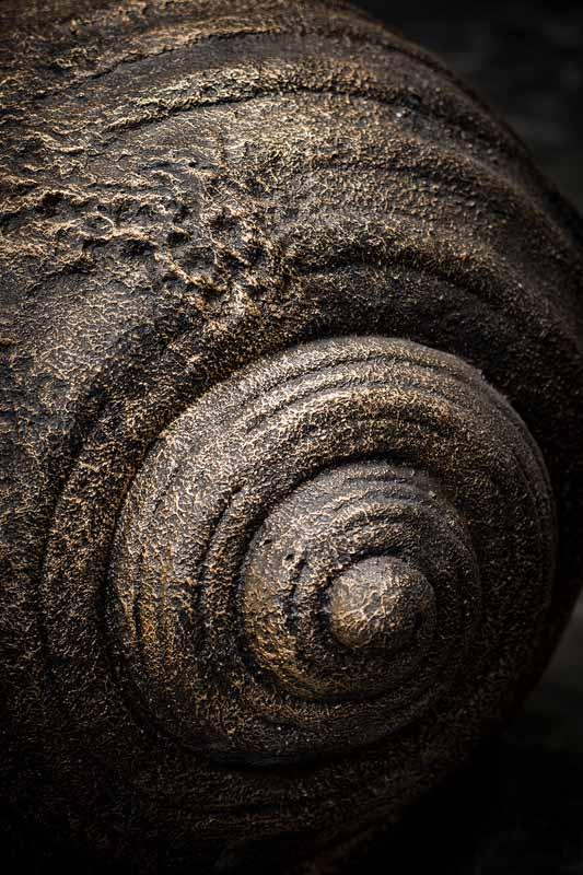 Giant sea shell pot details side pot
