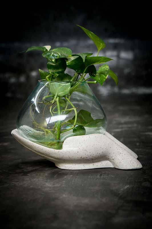 Glass bowl on palm