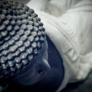lying buddha details hair