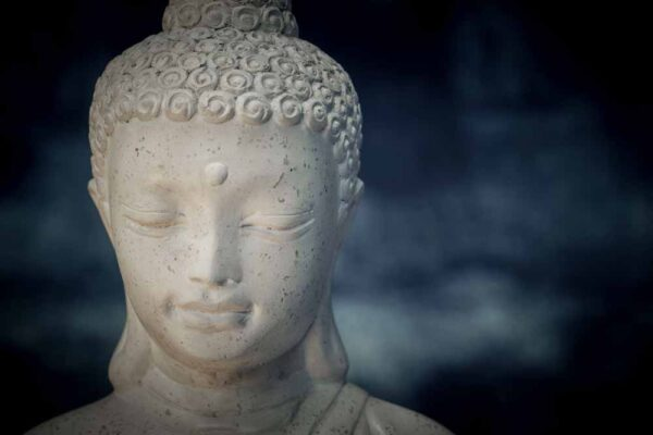 Juvenile Buddha details head