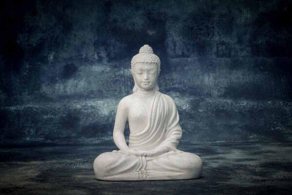 Juvenile Buddha total view