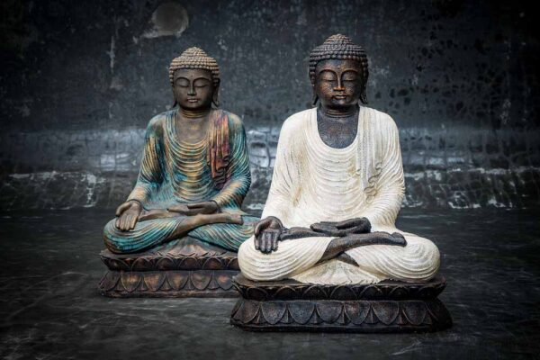 Sitting Buddha open hands on knee total view multi
