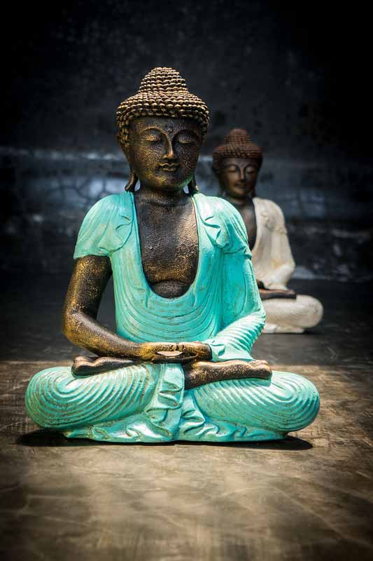 Meditating buddha total view