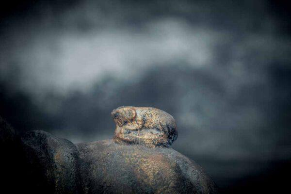 Sleeping Buddha on sphere chubby buddha details animal
