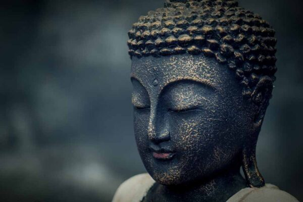 standing buddha hands up details head