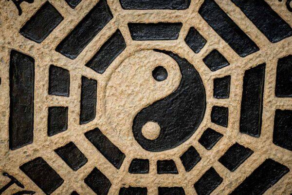 Ying Yang circle fossil details yinandyang