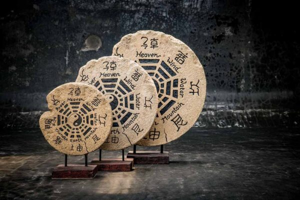 Ying Yang circle fossil total view multi