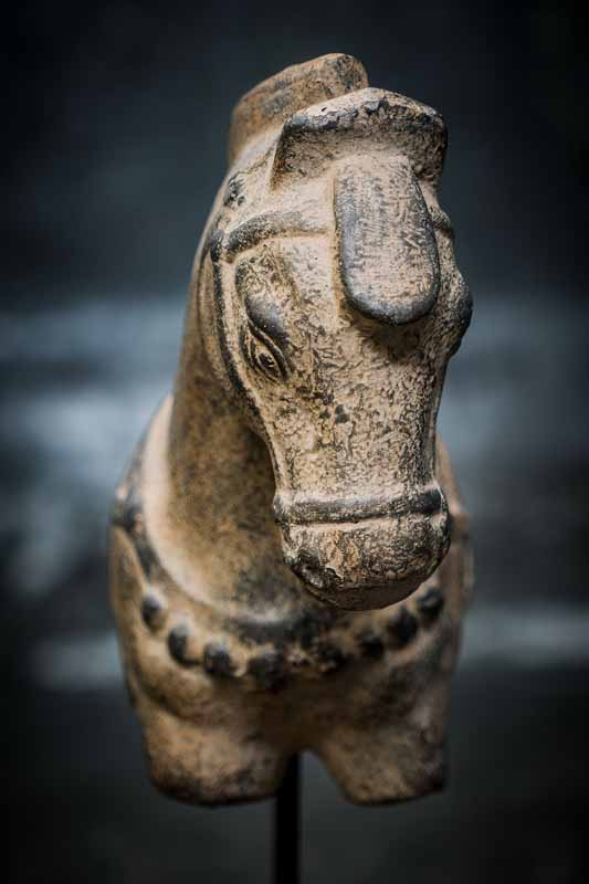 horse on wooden stand front view